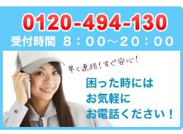 0120-494-130
